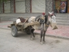 037-Tibet2007
