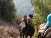 005_santiago_cheval